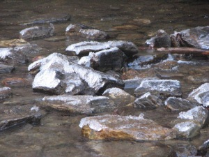 Ice-covered exposed rocks in Looking Glass Creek.